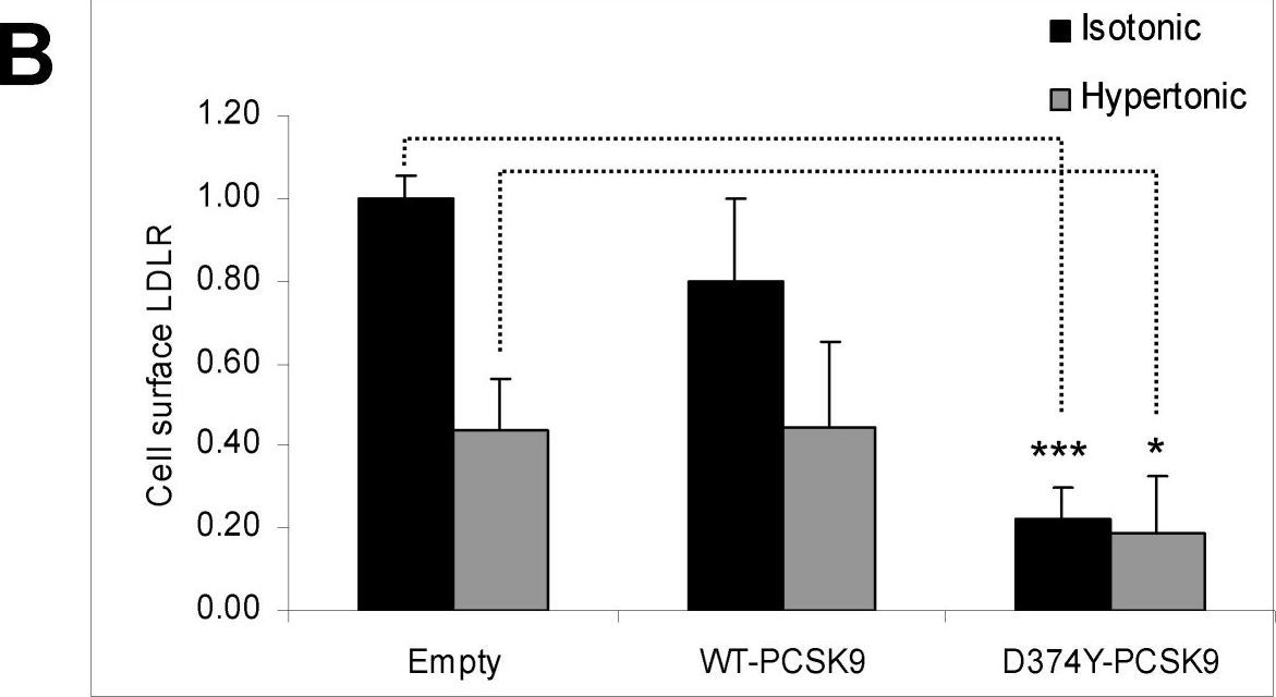 Degradation of the LDL receptors by PCSK9 is not mediated by a secreted protein acted upon by PCSK9 extracellularly.
