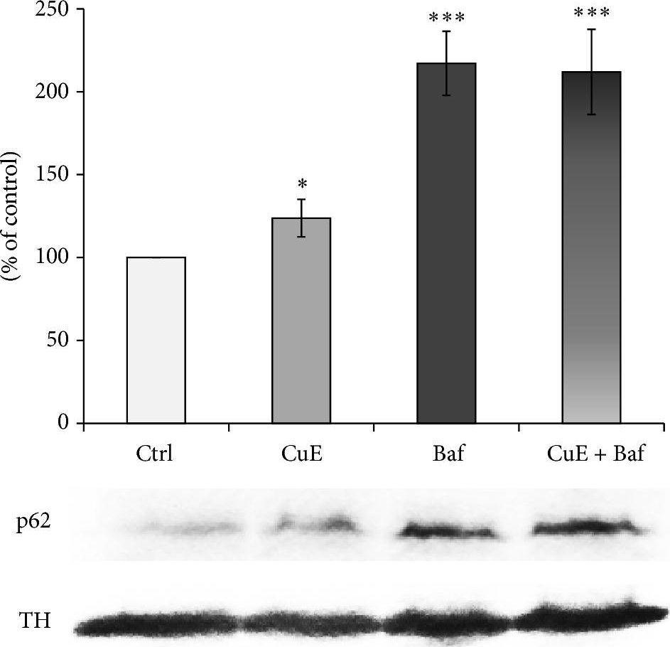 Cucurbitacin E has neuroprotective properties and autophagic modulating activities on dopaminergic neurons.